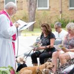 Blessing of the Animals 2021 Thumbnail